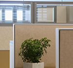 3 Key practices to help you manage Office Space Standards